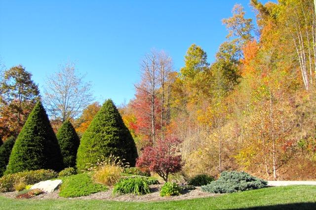 Autumn Brilliance Captured by Bob More